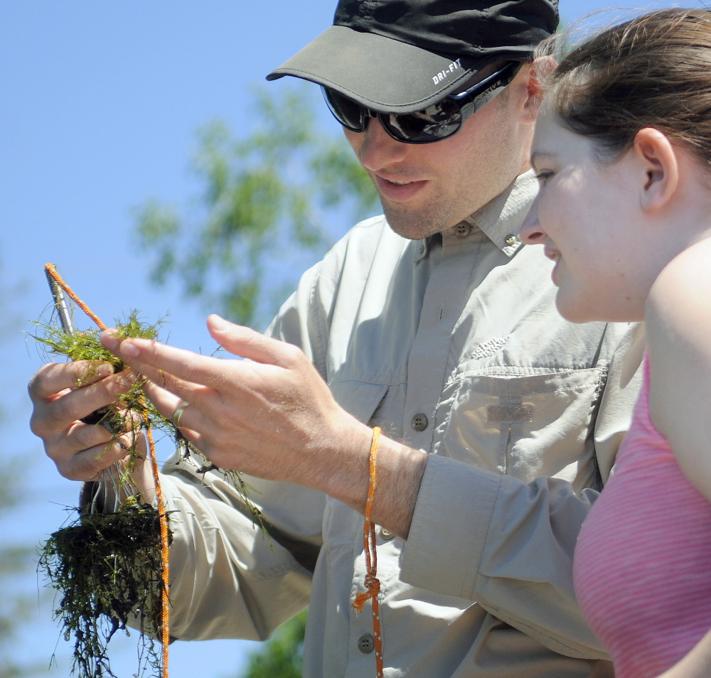 Robin Sleith, left, and team member Amy Havens, both of the New York Botanical Garden, examine algae collected Wednesday from Minnehonk Lake in Mount Vernon.