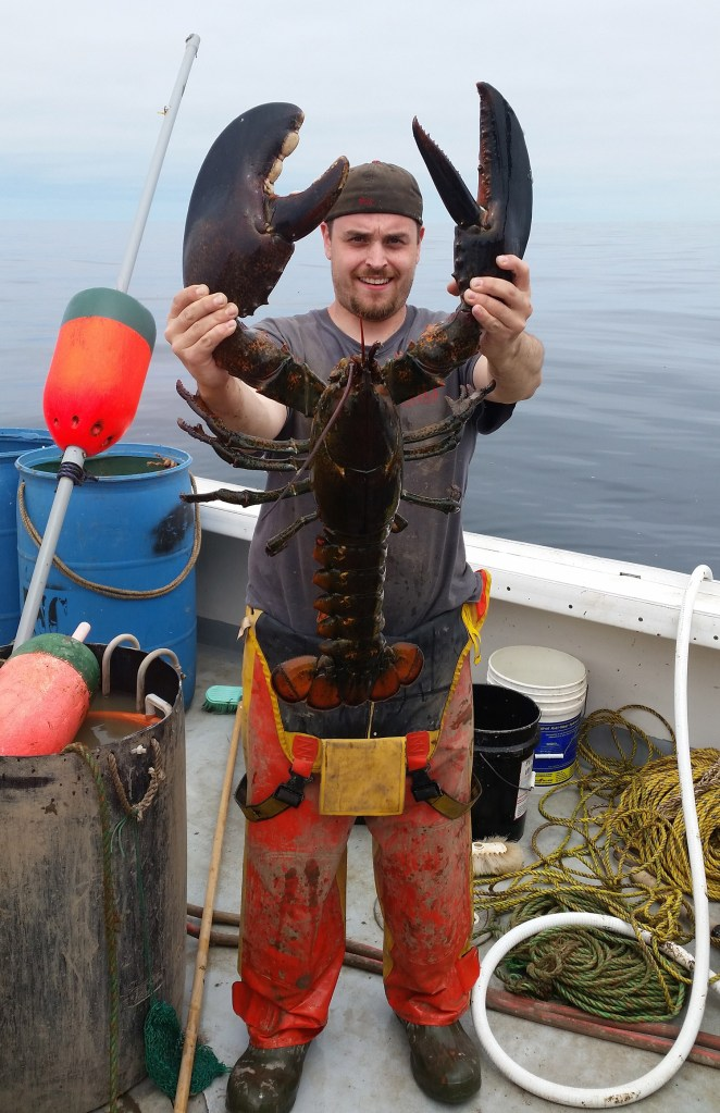 Ricky Louis Felice Jr. of Cushing poses with the giant lobster that the crew of a boat he was a deckhand on caught, then released, off the coast of Maine. Felice is 5 feet, 10 inches tall.