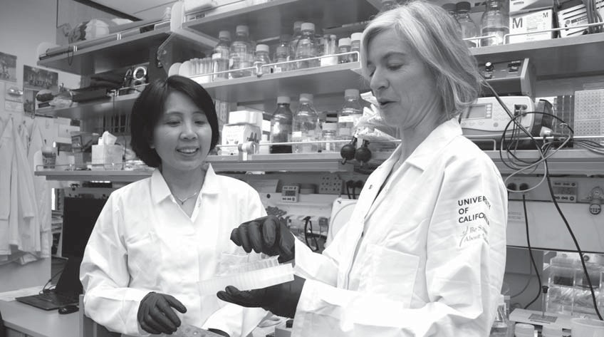 In this photo provided by UC Berkeley Public Affairs, taken June 20, 2014, Jennifer Doudna, right, and her lab manager, Kai Hong, work in her laboratory in Berkeley, Calif.