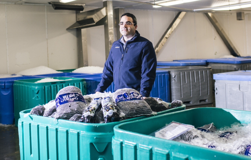 Peter Handy, shown at Bristol Seafood's plant in Portland, says the company recently introduced wild Maine mussels and he expects sales to keep growing in the years ahead.