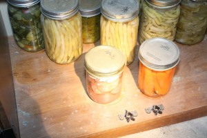Hope Kelly says the wardens removed 110 jars of her home-canned fruits and vegetables and 36 jars of moose meat. The meat was never proven to be illegally obtained, but all Kelly got back was 33 pints of the garden goods. A warden service evidence photo shows some of the jars.