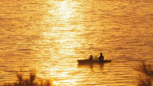 A PAIR OF KAYAKERS paddle during sunset in Maquoit Bay in Brunswick on Thursday night in this photo by Brunswick photographer Glenn Michaels.
