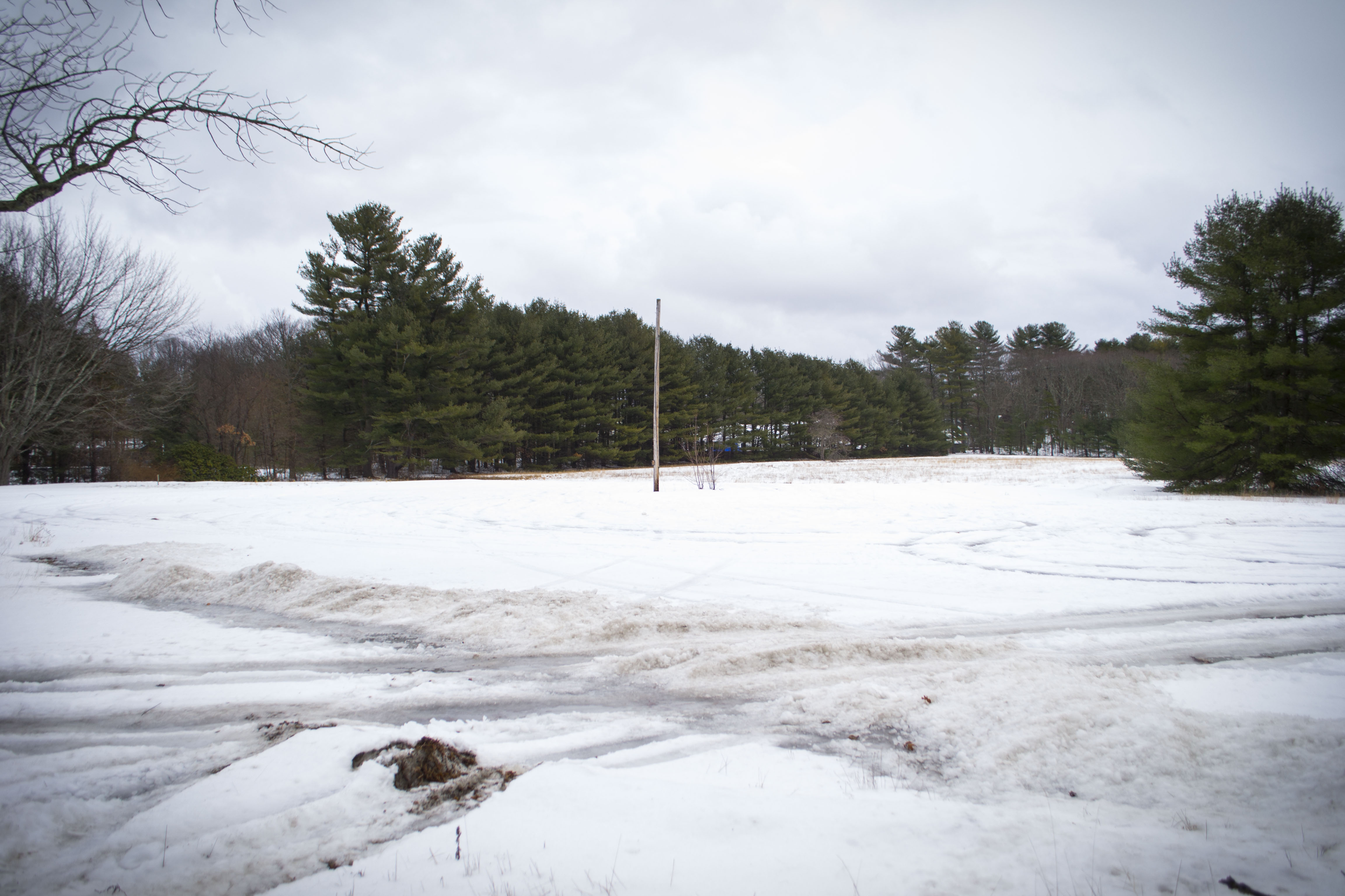 A parcel of land at 511-515 Elm Street in Biddeford, known as the Pate Property, will officially become the site of a consolidated York County courthouse in 2020, after the Biddeford City Council unanimously approved the sale of the property on Tuesday. ALAN BENNETT/Journal Tribune