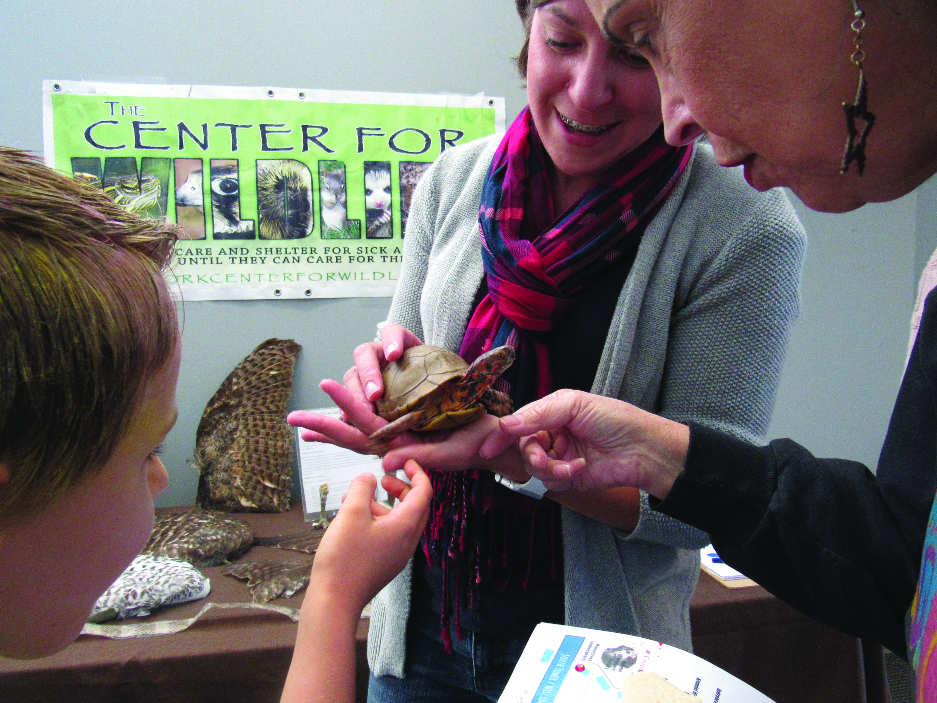 The Center for Wildlife will be back at this year's CONNECT Fair in Kennebunk with their animal ambassadors. SUBMITTED PHOTO