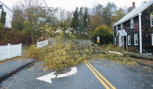 A TREE FELL ACROSS Winter Street in Topsham, narrowly missing a house.