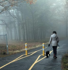 A WOMAN walks her dog on the Brunswick Landing Perimeter Trail Saturday morning.
