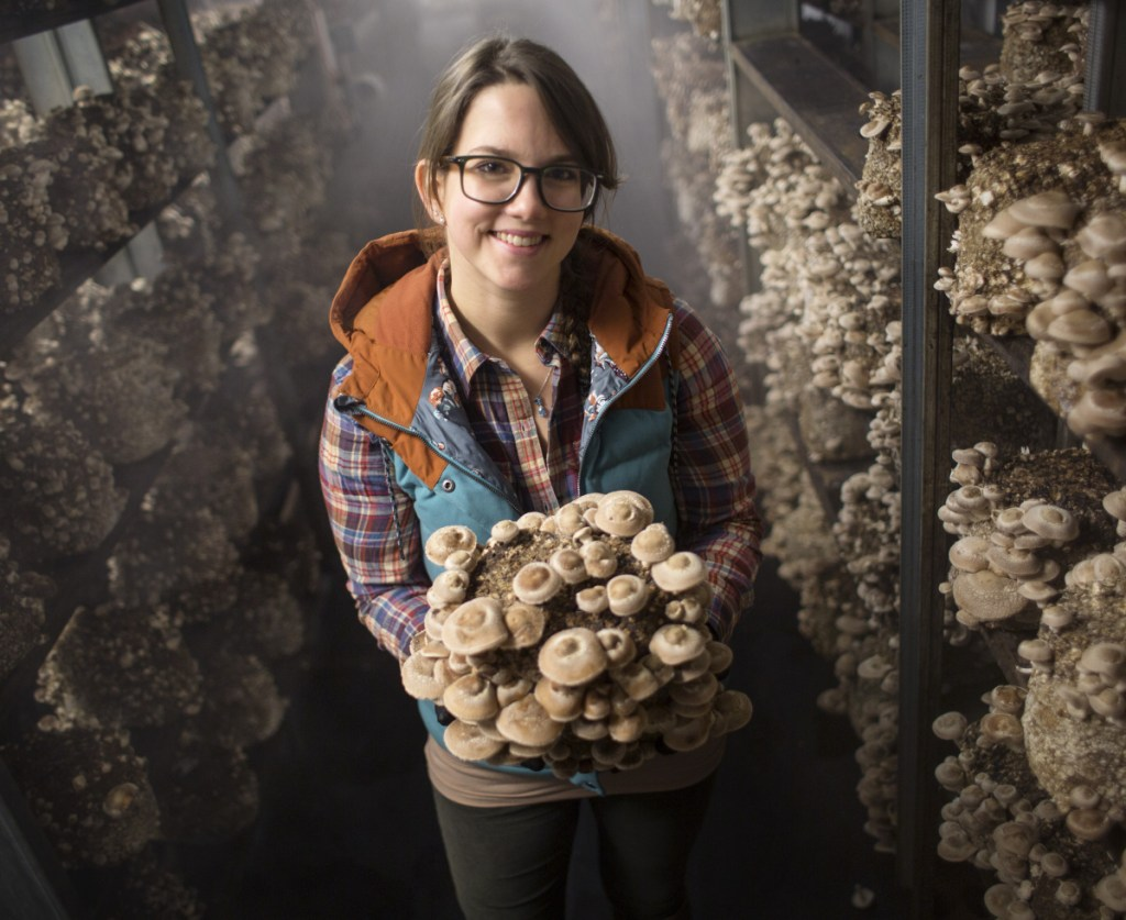 Emily Sharood of Mousam Valley Mushrooms in the shiitake grow room at the farm in Springvale.