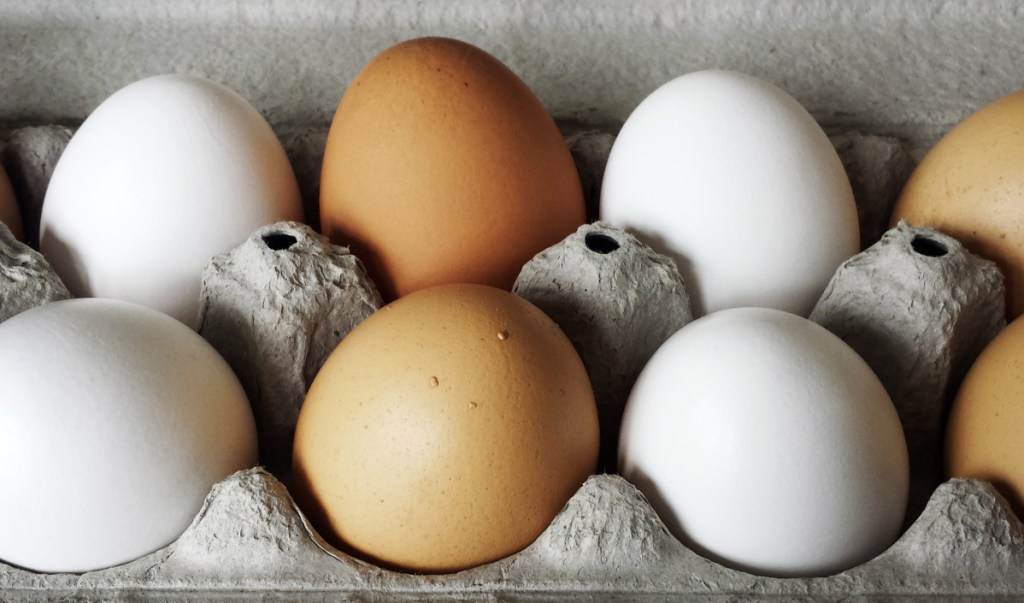 Pullet eggs in a carton, with large eggs behind them to show the size difference. You can still bake with pullet eggs, but you should use three for every two large eggs called for in a recipe.