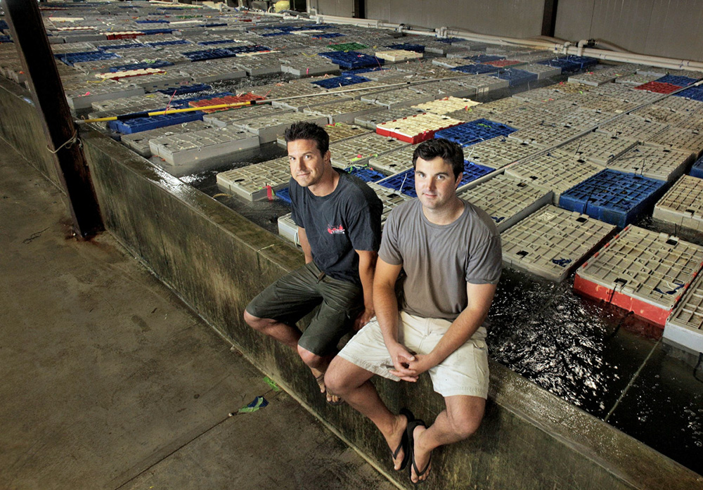 Brothers Brendan, left, and John Ready, seen in 2014, plan to remain with the business they founded in 2004.