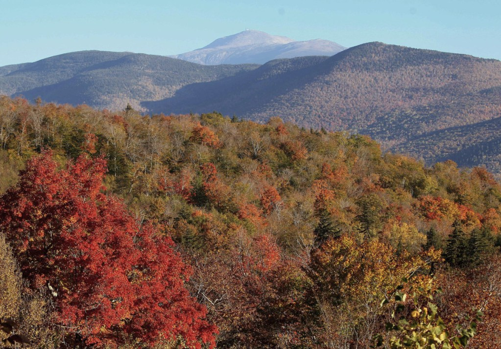 The White Mountain National Forest is visible from Hart's Location, New Hampshire. The U.S. Forest Service is marking the forest's centennial with a new exhibition on its history.