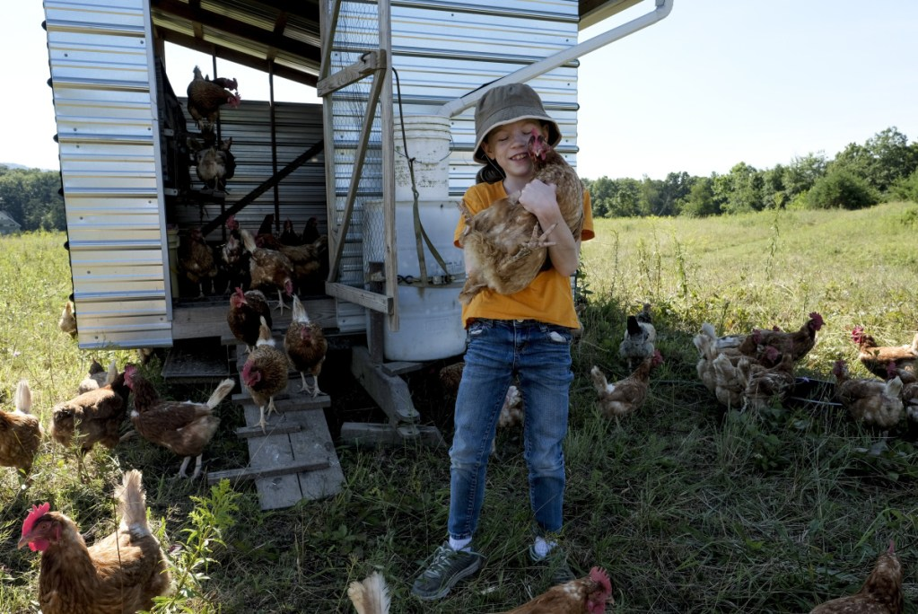 Sadie Yates, 9, hugs one of the chickens that her family raises at Broomgrass in Gerrardstown, W.Va., on July 19, 2018. MUST CREDIT: Washington Post photo by Bonnie Jo Mount.
