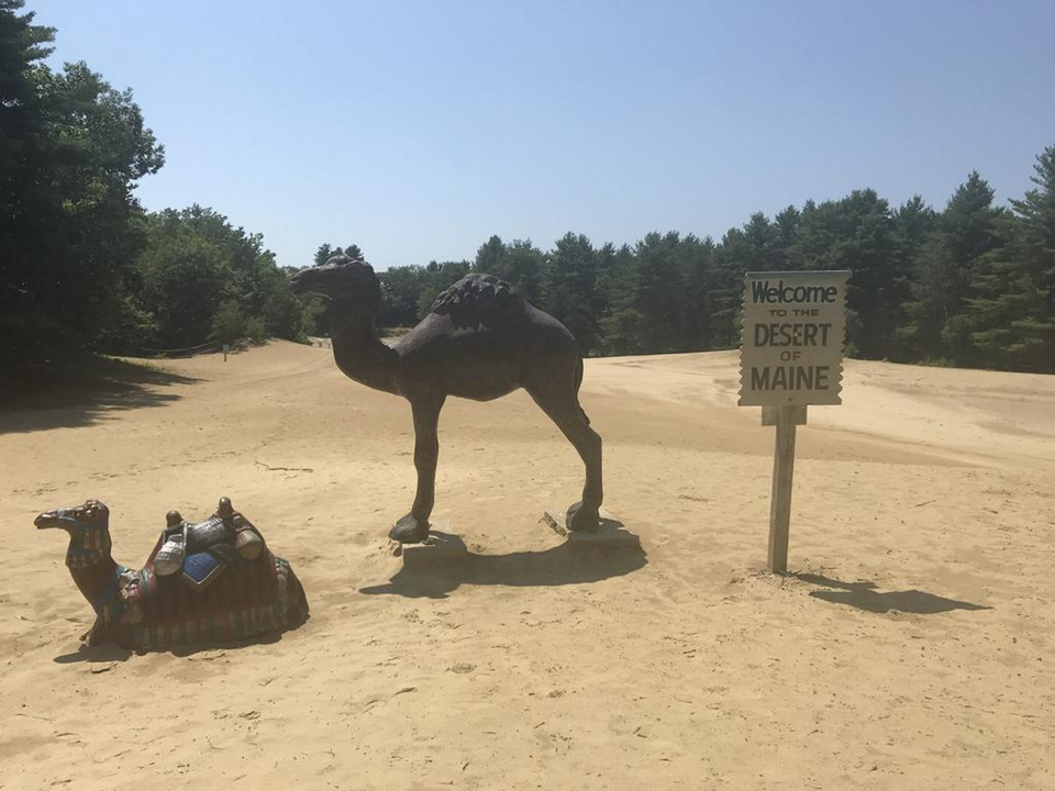 """After nearly 15 years, Gary and Ginger Currens are selling their home at 95 Desert Road in Freeport and the dunes that come with it. The roughly 40-acre Desert of Maine, offered for $725,000, includes the """"desert,"""" a 48-site campground, a gift shop and a barn that is more than 225 years old."""