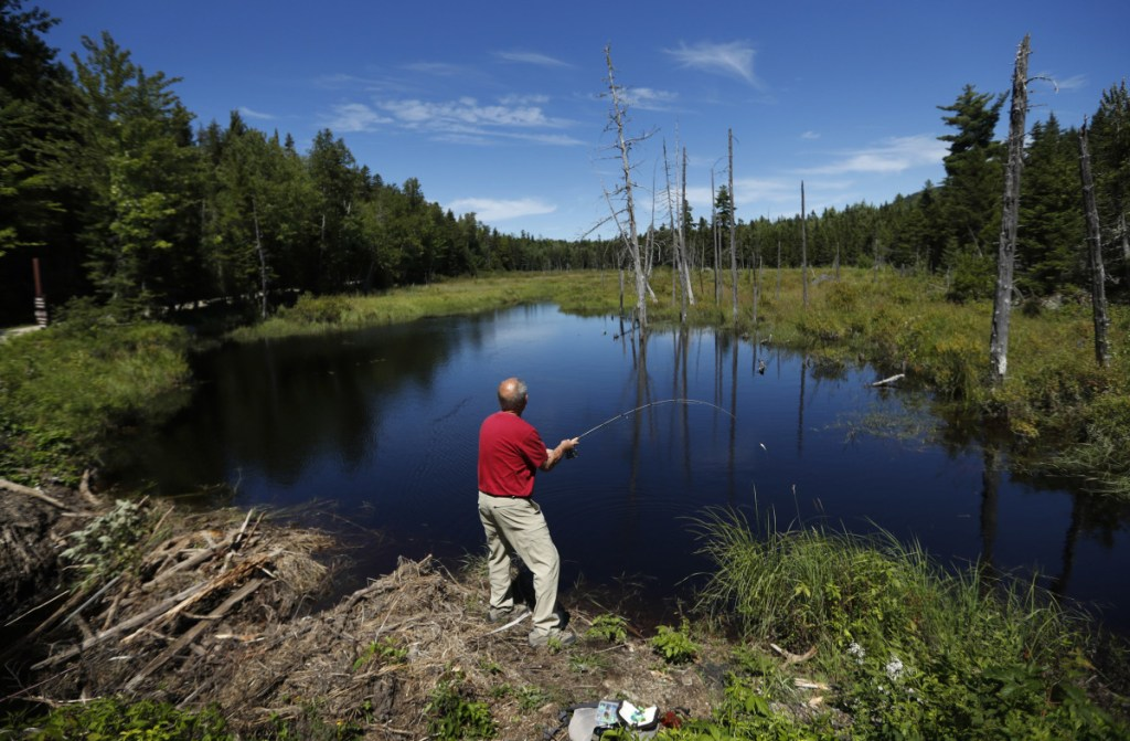 A visitor to the Katahdin Woods and Waters National Monument casts for brook trout in a small pond. The National Park Service this month requested bids for 16 secondary road signs that will be installed this year.