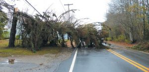 THE OCTOBER 2017 windstorm left thousands without power for days, hitting the Midcoast especially hard. TIMES RECORD FILEPHOTO