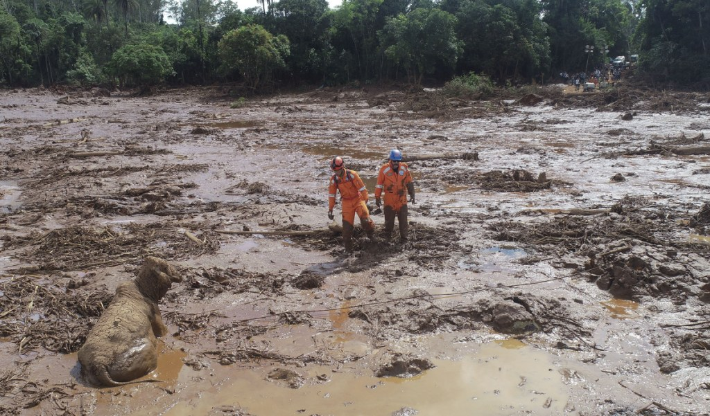 Rescue workers try to reach a cow that is stuck in a field of mud, two days after a dam collapse in Brumadinho, Brazil, on Sunday.