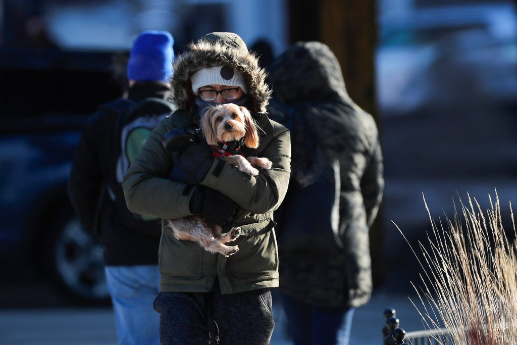 A man holds a dog as they enter a building in Chicago on a cold and frigid Friday. An arctic blast spread painful cold across the Midwest on Friday, with more dangerous weather expected next week.
