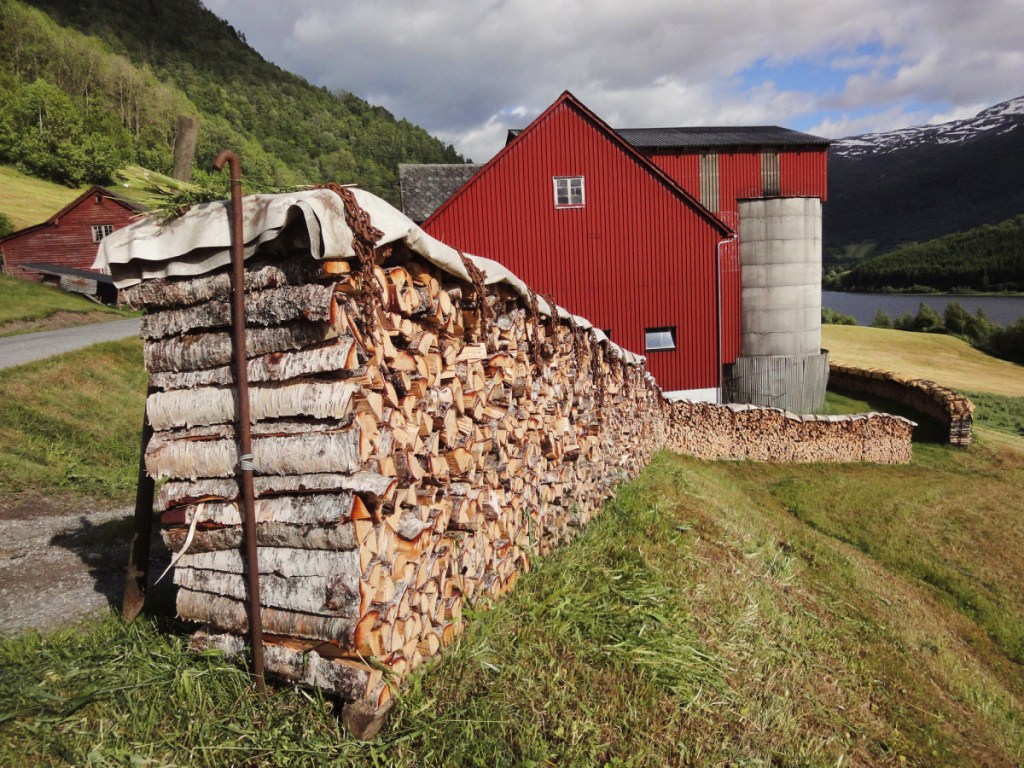 In Norway, a long and winding wood stack sits along the side of the road.