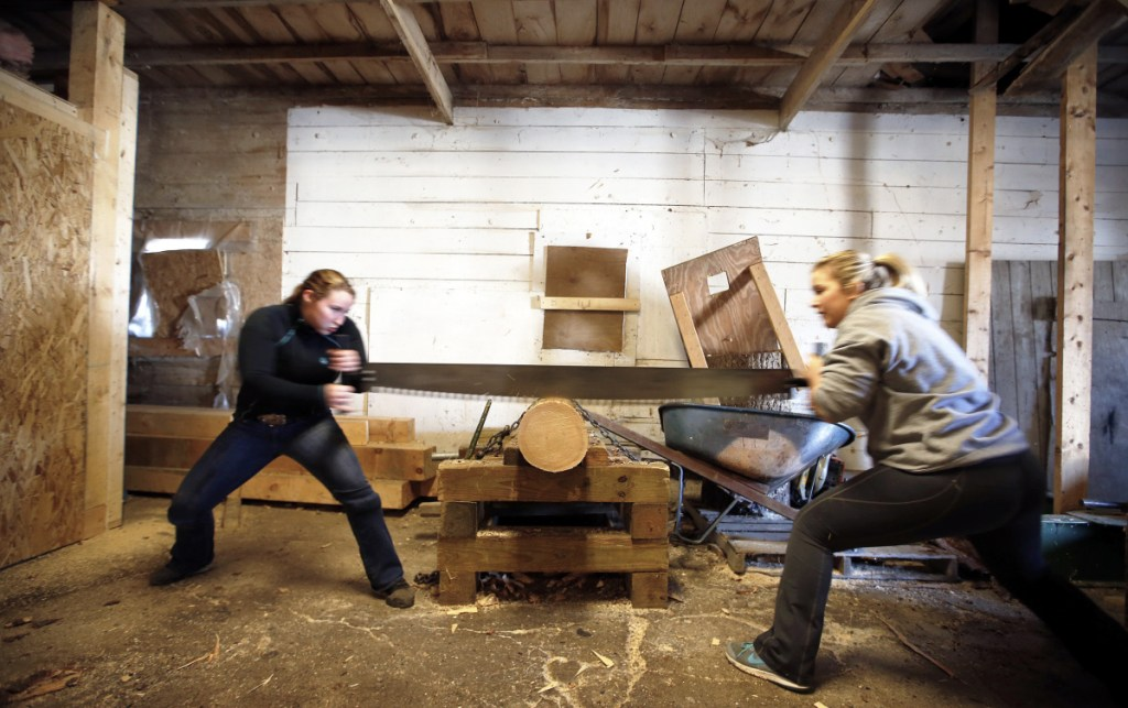 Unity College students McKayla Fowler, left, and Tracy Cook practice cross cutting for the Unity Woodsmen team after classes. Fowler also competes with the Axe Women Loggers of Maine – the largest group of women loggers in North America. They travel to perform and compete in logging activities.