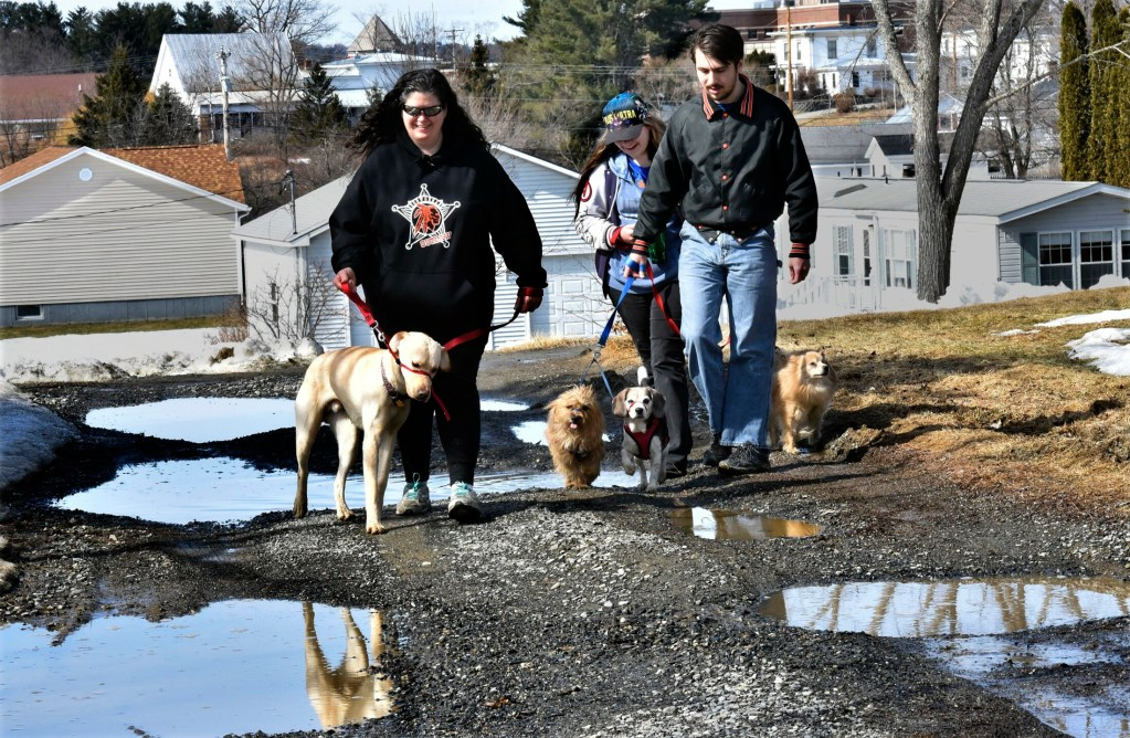 On a springlike Tuesday, the Stubb family, from left, Rebecca Stubbs and children Cheyeanne and Merle, take their dogs for a walk in the fresh air while avoiding potholes on their way home in Skowhegan.