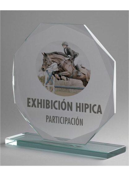 1311-Cristal-Economico-Trofeo-Placa-Reconocimiento-Homenaje