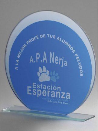 1358-Cristal-Economico-Trofeo-Placa-Reconocimiento-Homenaje
