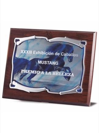 1720-Placa-Economico-Trofeo-Reconocimiento-Homenaje-Barata