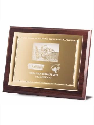 1735-Placa-Economico-Trofeo-Reconocimiento-Homenaje-Barata