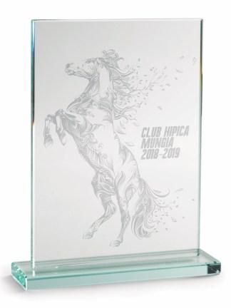 2350-Cristal-Economico-Trofeo-Placa-Reconocimiento-Homenaje