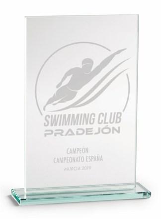 2375-Cristal-Economico-Trofeo-Placa-Reconocimiento-Homenaje