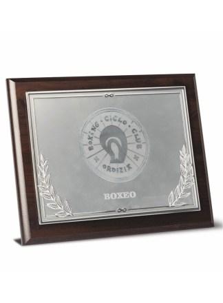 2725-Placa-Economico-Trofeo-Reconocimiento-Homenaje-Barata