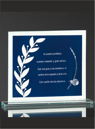 Trofeo-Boda-Personalizados-cristal-Placa-de-Conmemorativa-Eventos-Bodas-4040