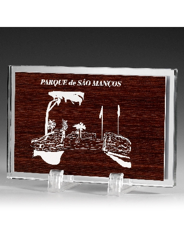 9355-Cristal-Economico-Trofeo-Placa-Reconocimiento-Homenaje