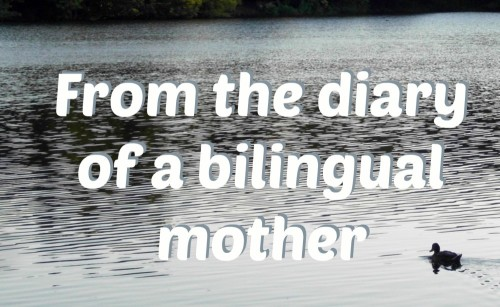From the diary of a bilingual mother, part 1