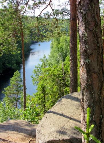 Helvetinjärvi National Park 1