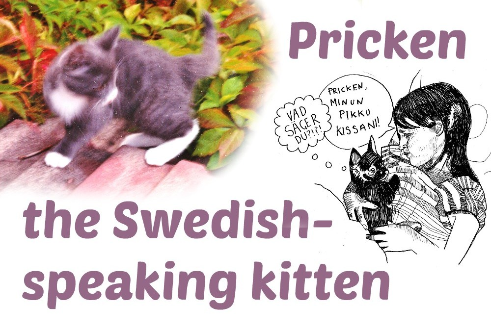 Motivating a bilingual child: Pricken the Swedish-speaking kitten