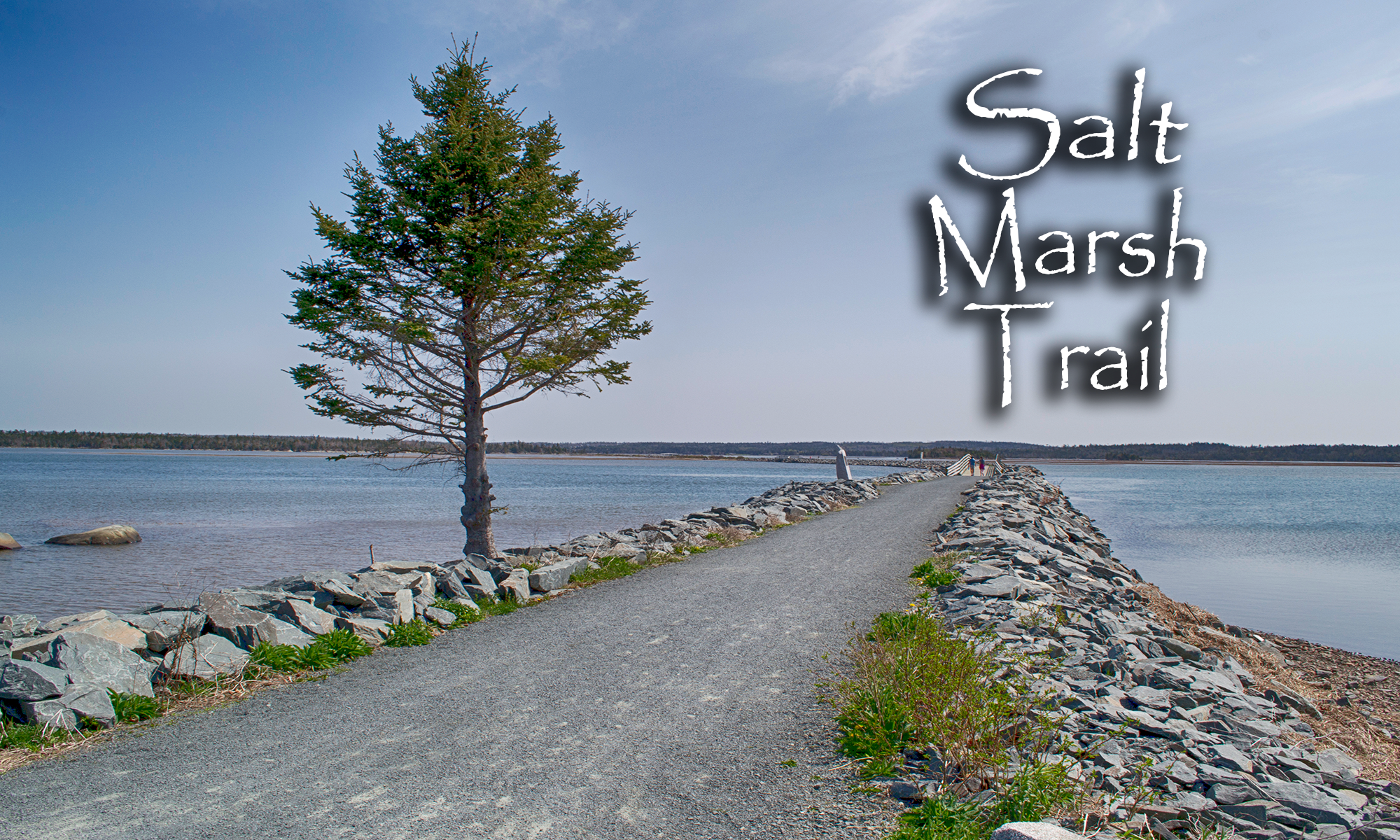 Salt Marsh Trail Photos