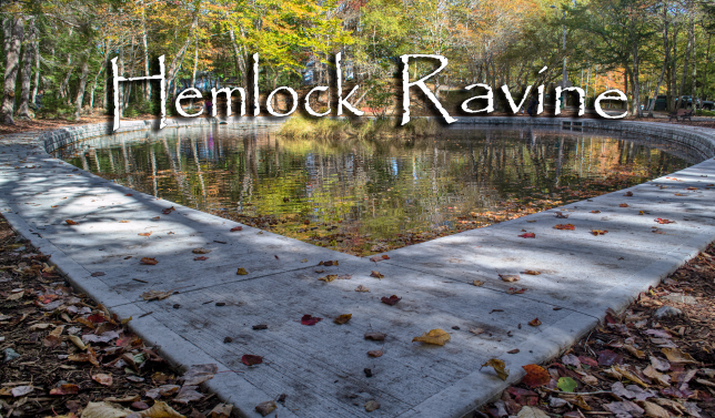 Hemlock Ravine Park Photos