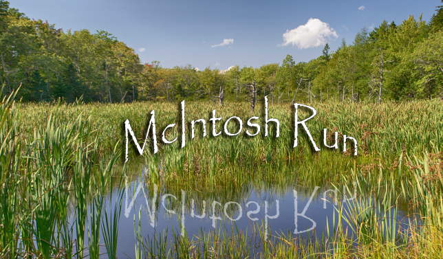 McIntosh Run Community Trail Photos