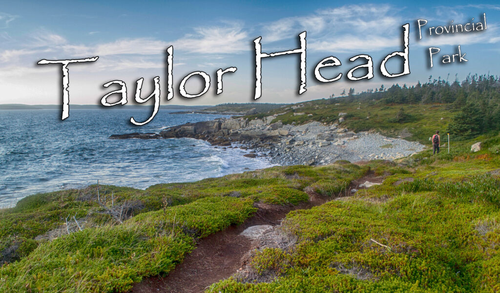 Taylor Head Provincial Park Photos