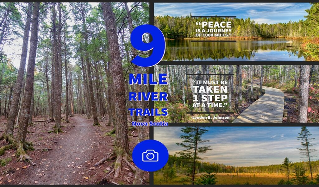 9 mile river trails photos