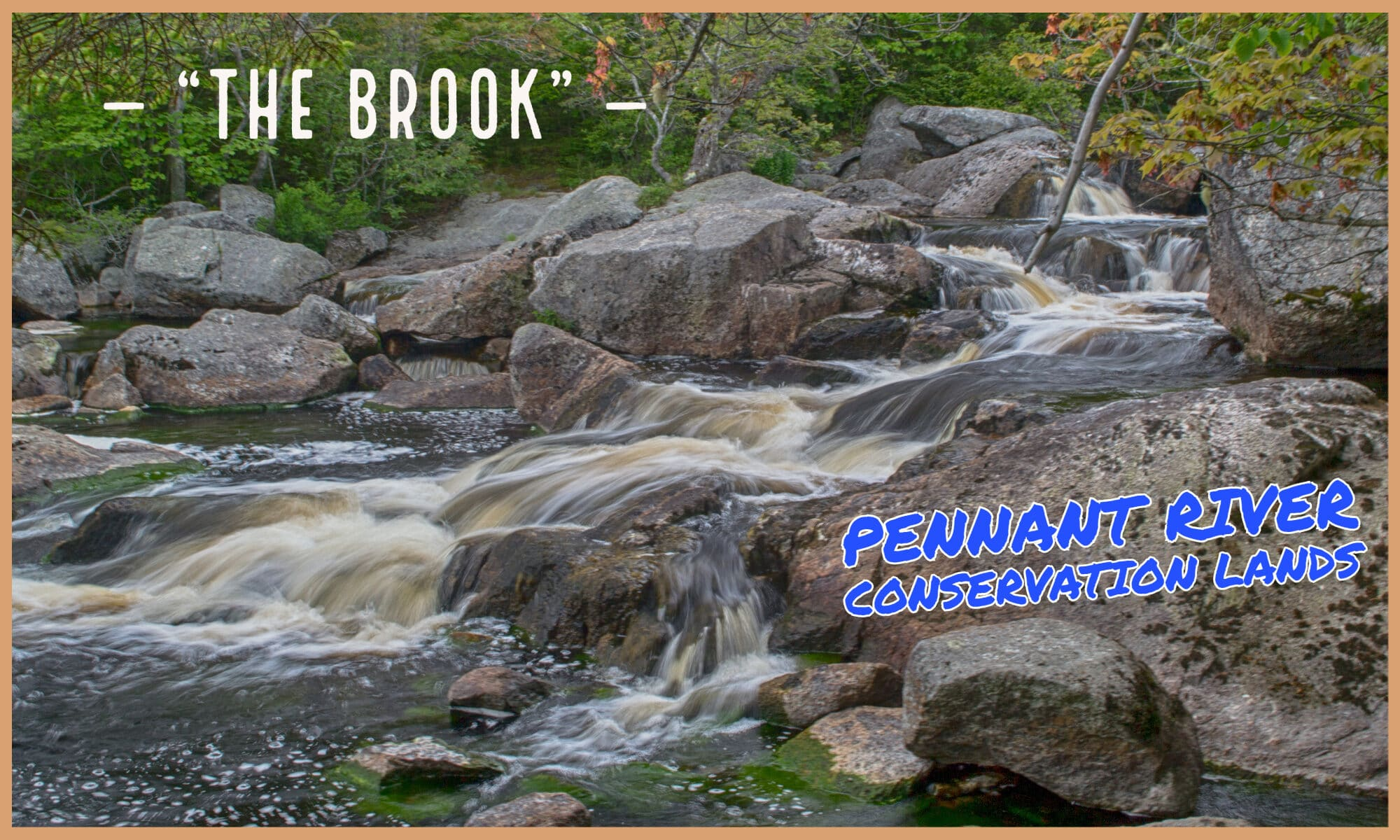 The Brook - Pennant River Conservation Lands in Halifax, NS