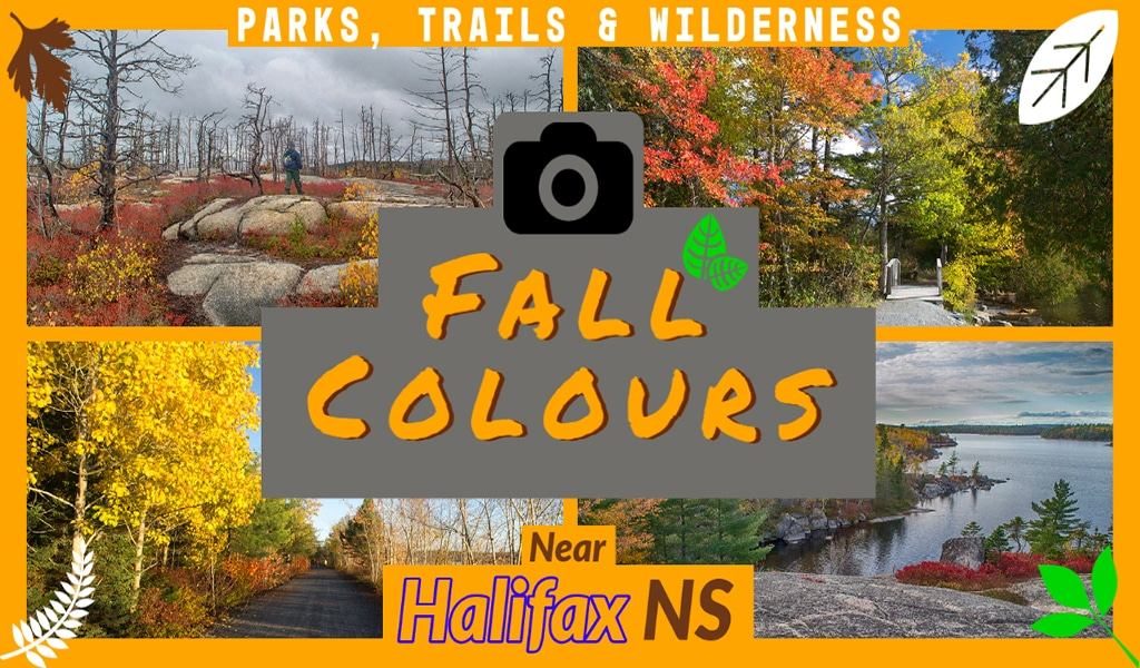 Fall Colours in parks, hiking trails & wilderness areas near Halifax, Nova Scotia