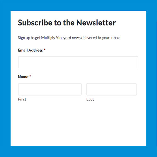 Subscribe to the Newsletter