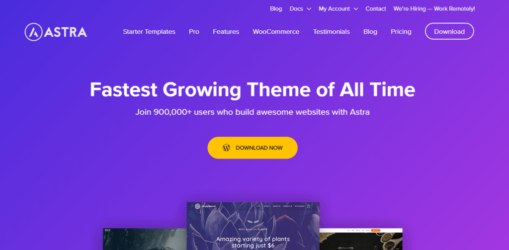 Best WordPress eCommerce Themes-Astra