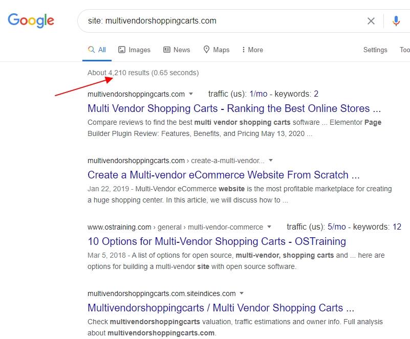 Google Indexing Status