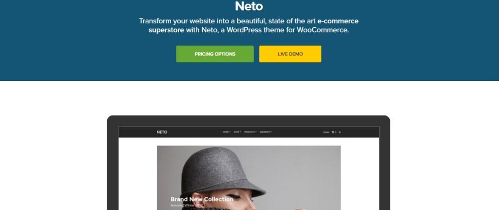 Neto Theme