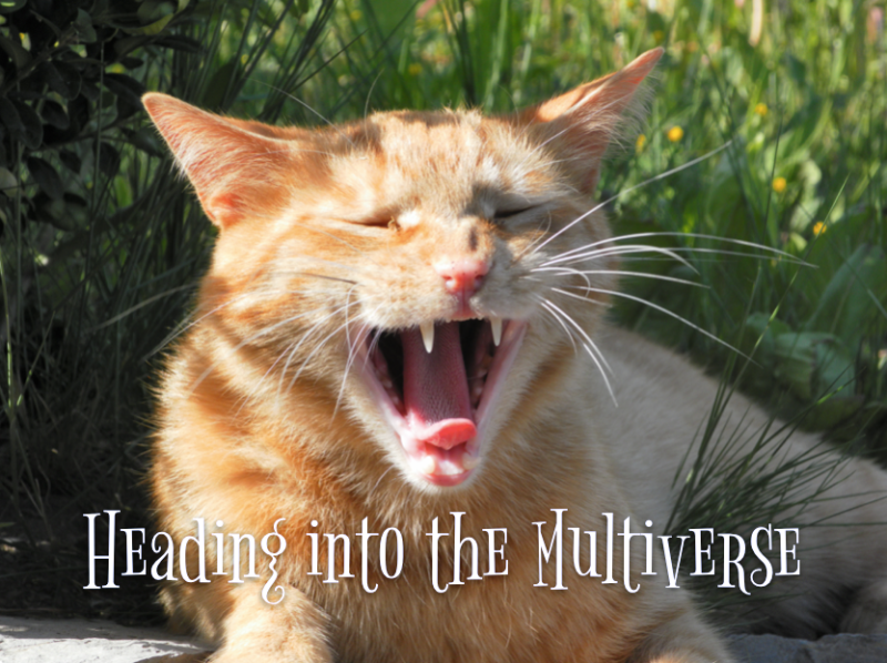 Yawning ginger cat with the caption 'Heading into the Multiverse'