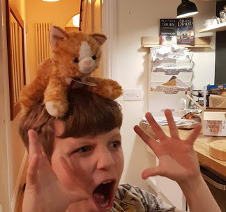 Schrödinger on the head of a child