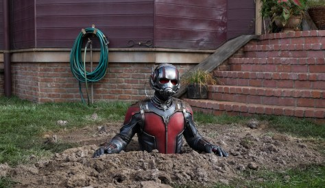 Antman Review 02