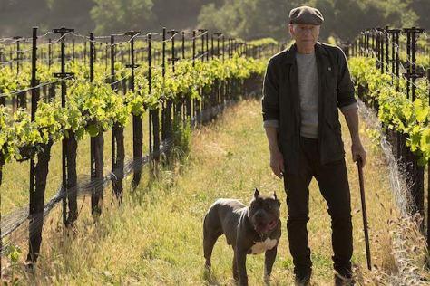 picard-cbs-patrick-stewart-vineyard